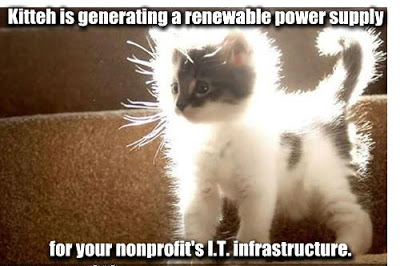 Kitteh is generating a renewable power supply for your nonprofit's IT infrastructure.